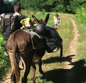 Seven-day unaccompanied hike with a donkey