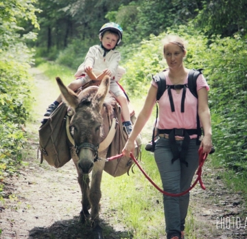 Five-day unaccompanied hike with a donkey beginner